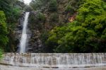 2017_Waterfall_Gully_07.jpg